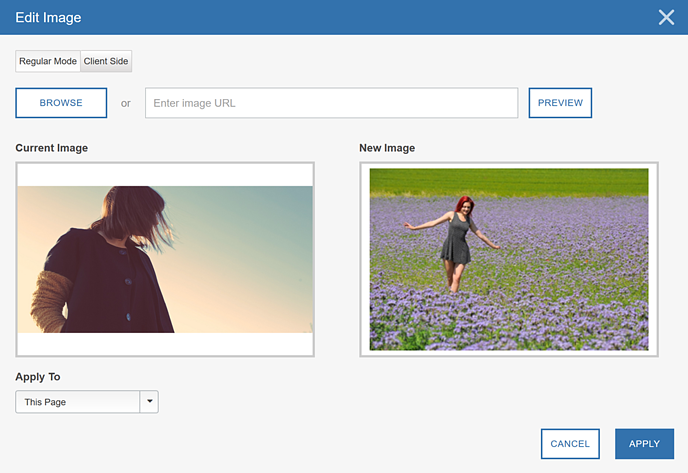 Image Swap Using the Visual Editor - Step 3 Edit Image III